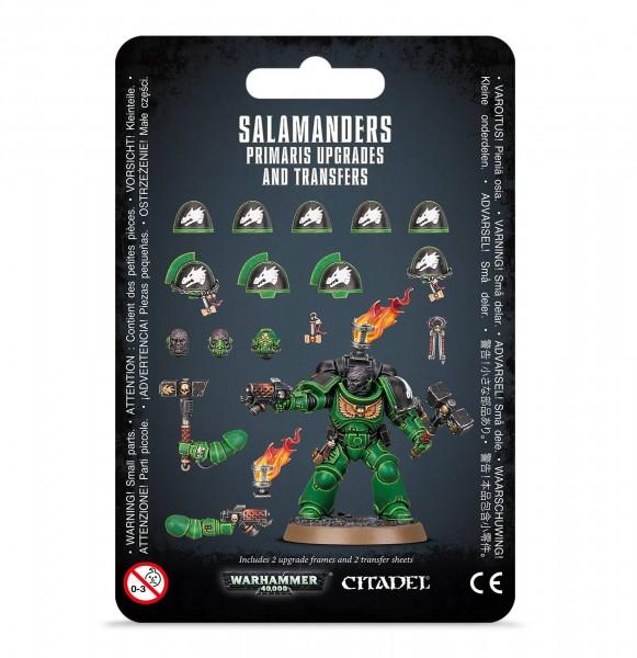 Upgrades und Abziehbilderbögen: Salamanders Primaris